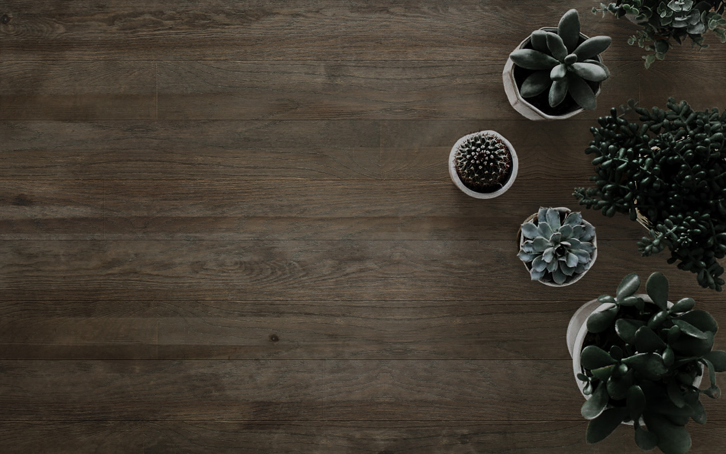 Lianz Surfaces | Flooring Product Malaysia